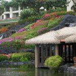 Grand-Hyatt-Kauai-Tidepools