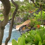 Grand-Hyatt-Kauai-water-sli