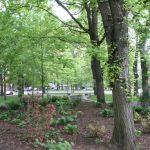 Portland_Parks6