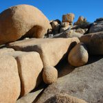 joshua-tree-Wonderland-Rock