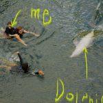 kahala-dolphin-quest-roland