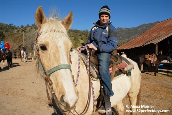 rankin-guest-ranch-corral-roland-horse