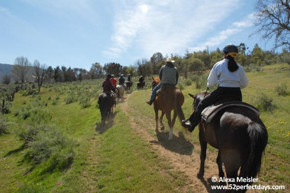 rankin-guest-ranch-horse-back-ride