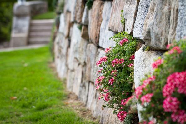 Enjoy the award-winning gardens along the paths of the Bryn Athyn Historic District in Bryn Athyn, PA