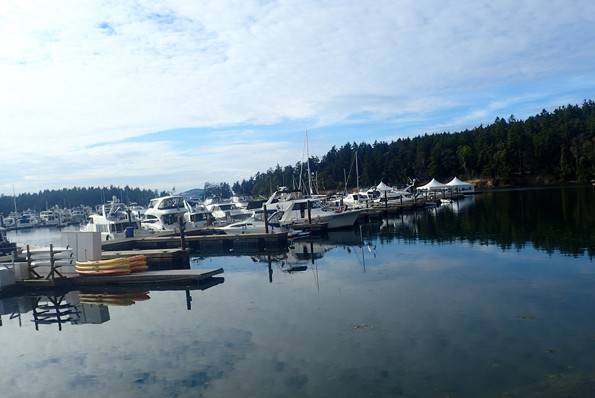 view from the Marona Bar and Grill in the San Juan Islands
